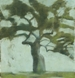 Apple tree (SOLD)